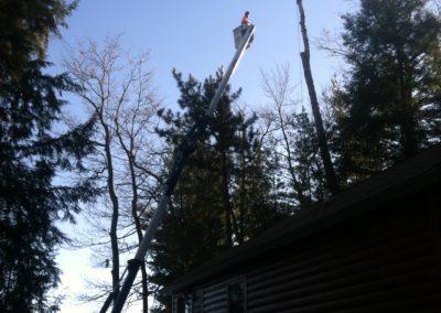 Top of Birch just taken off